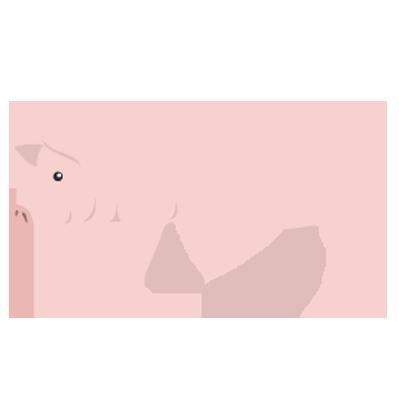 金運アップに効果のある豚革の財布